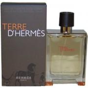 (M) TERRE D'HERMES 3.3 EDT SP